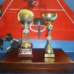 FIMBA-Pokale-500