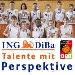 ING-DiBa Perspektivkader 2014m-500mitLogo